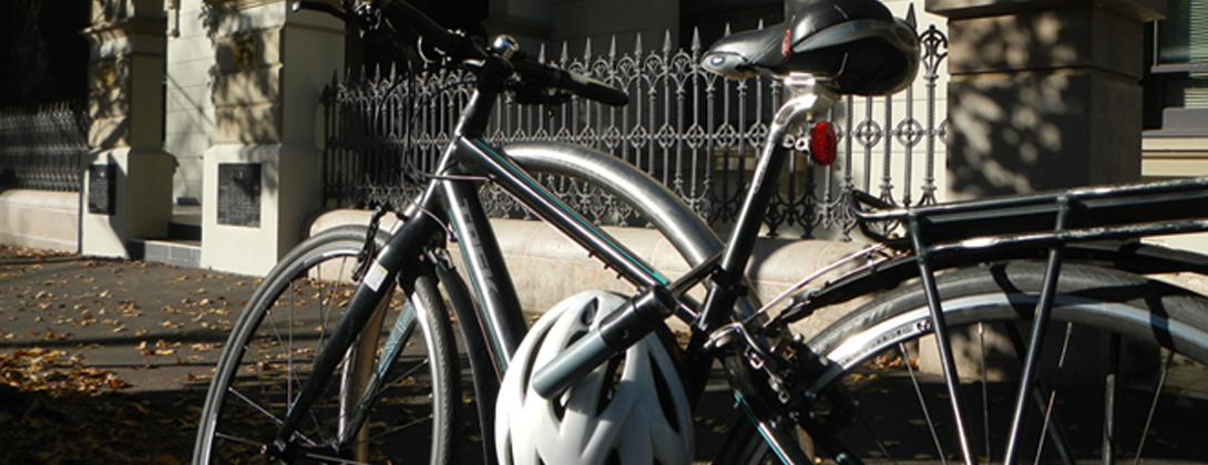 photograph of a bike leaning against a fence